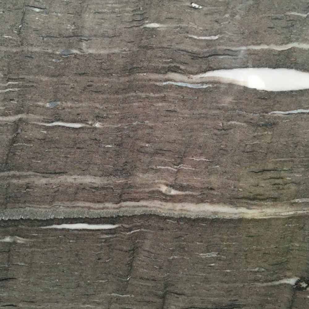Cygnus Veint Cut